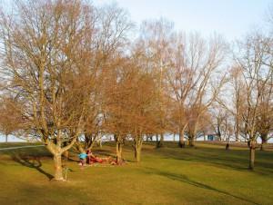 04_Hörnle-Park_Konstanz_3-2013_2995_Mm